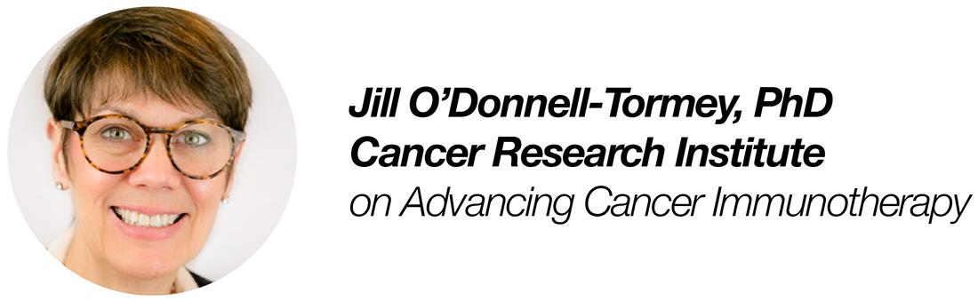 Jill ODonnell Tormey
